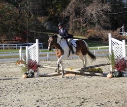 IEA Jumping Competition